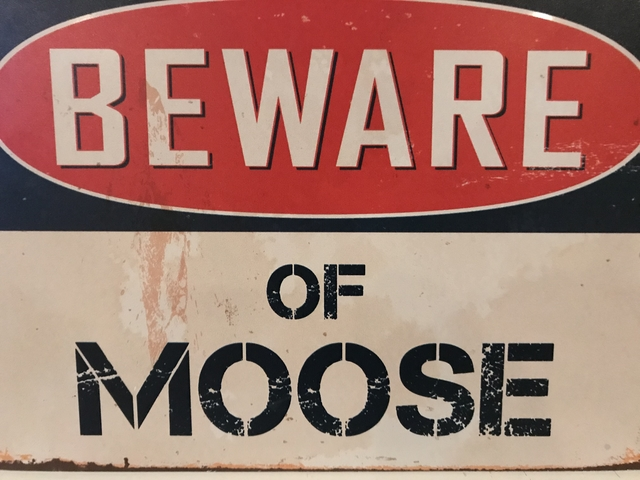Beware of Moose(1)